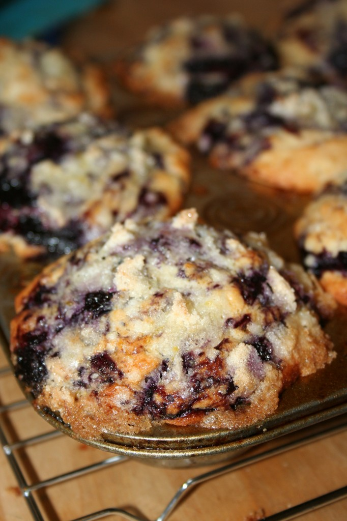 Image of blueberry muffins